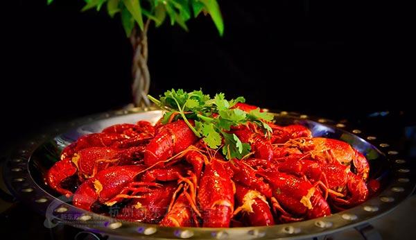 学正宗小龙虾技术哪里好,徐州新东方创业班特